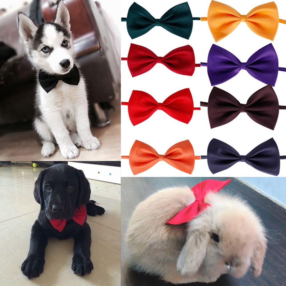 RUNGAO - Corbata para perro, gato, mascota, juguete para cachorro ...