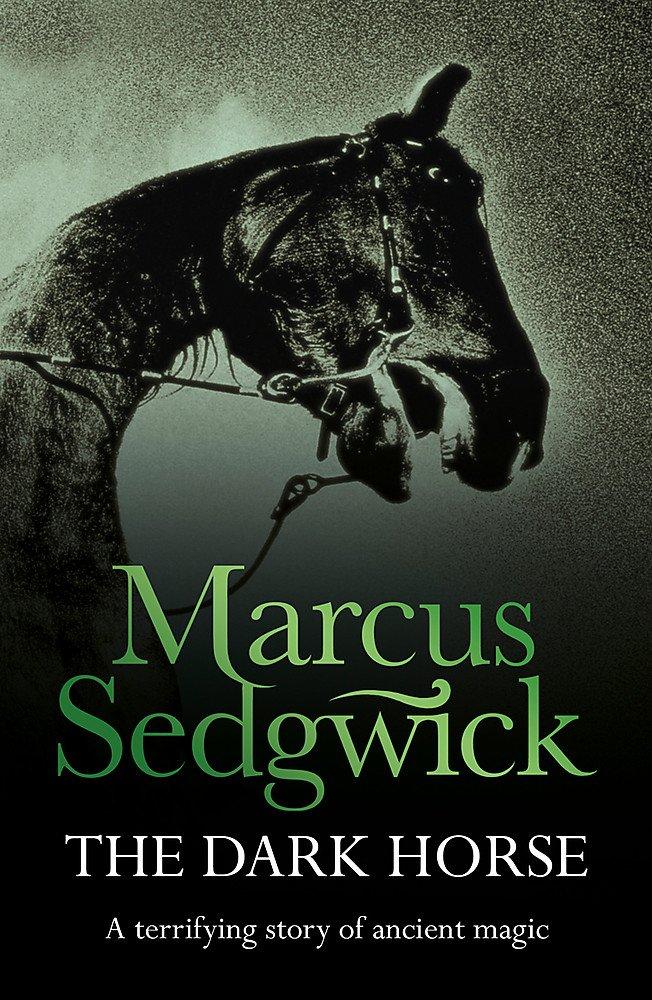 Ebook The Dark Horse By Marcus Sedgwick
