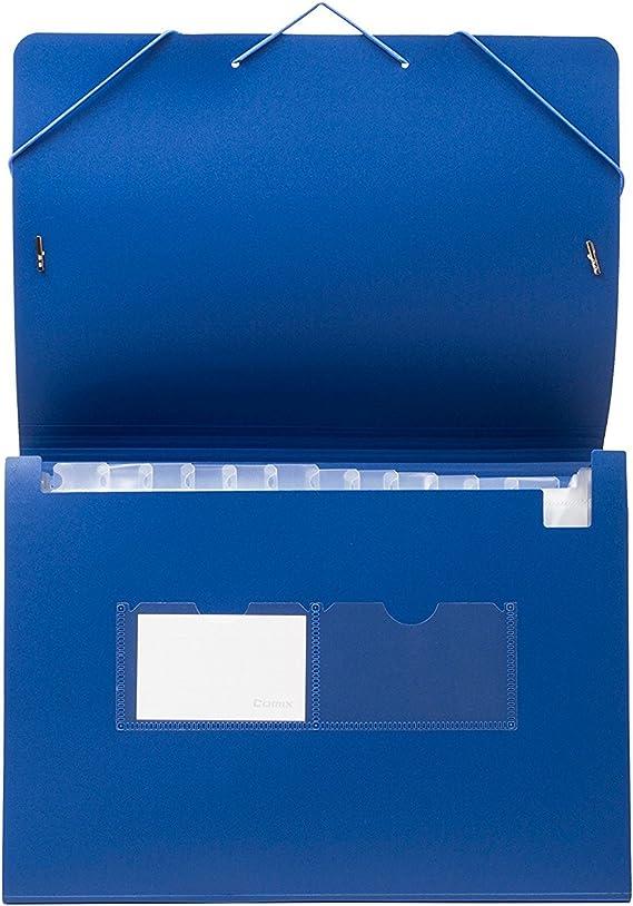 Kaka Mall Cartella Portadocumenti A4 Fisarmonica Contenere Almeno 400 Fogli Impermeabile Espandibile con 12 Tasche 2 Sacchetto di Biglietto da Visita Ufficio Scuola Viaggio Blu