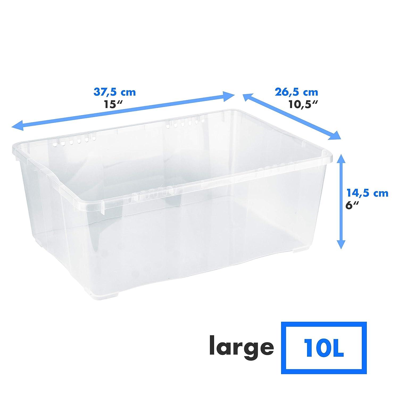 Caja Multiusos Organizador de Armarios para Ordenaci/ón de Ropa Caj/ón de Pl/ástico Transparente Apilable Grizzly 5 x Caja de Almacenaje con Tapa de 10 L