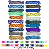 West Coast Paracord Zesty 550lb Survival Paracord Random Combo Crafting Kit 10 Colors of 500lb Cord and 10 Buckles - Type III
