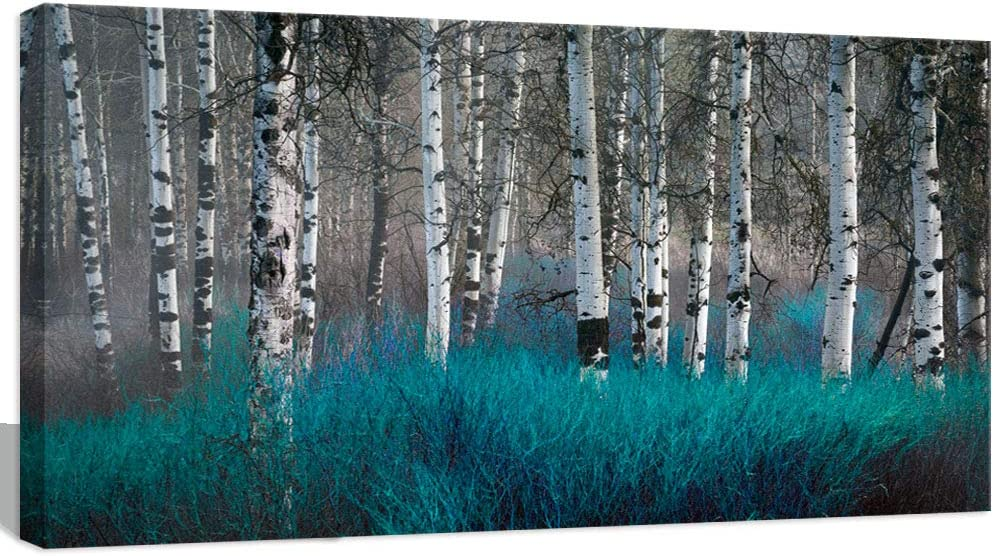 Amazon Com Visual Art Decor Turquoise Wall Decor Birch Trees Autumn Forest Canvas Prints Nature Scenery Picture Framed Painting Decoration For Modern Living Room Bedroom Office Posters Prints