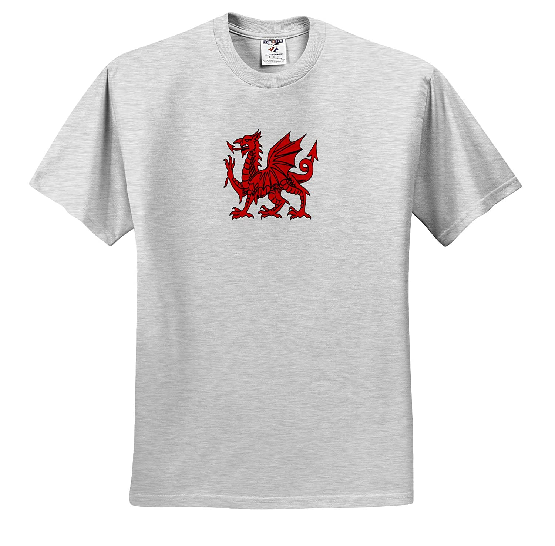 Adult T-Shirt XL ts/_309597 Vector 3dRose Taiche Y Ddraig Goch The Red Dragon or Y Ddraig Goch Isolated