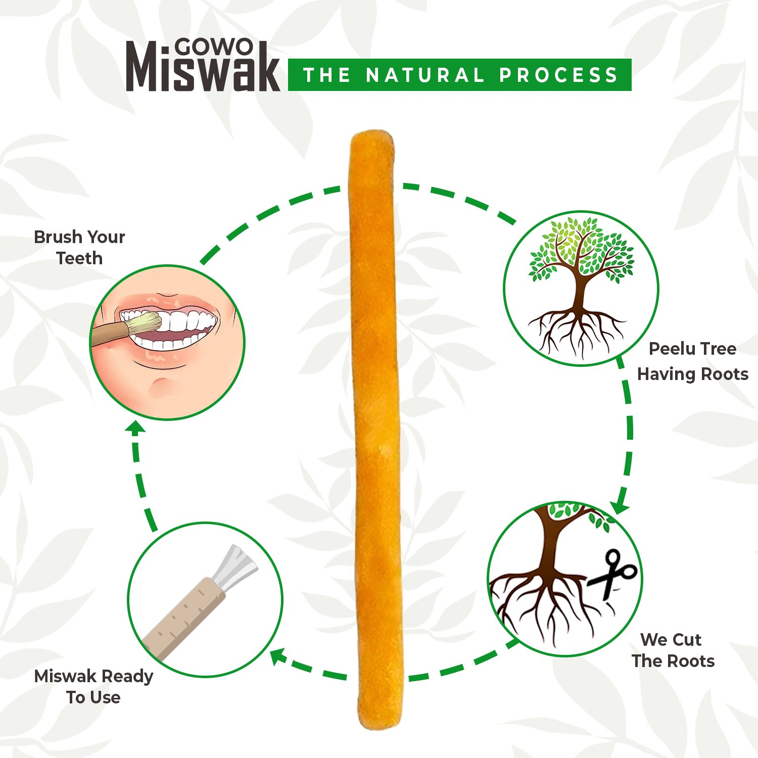 Original GOWO Miswak Sticks (3 Pack) 100% Natural Teeth Whitening Kit Natural Toothbrush Chemical Free Teeth Whitener and Breath Freshener Best Travel Gift For Hajj Umrah No Toothpaste Needed by GOWO (Image #3)
