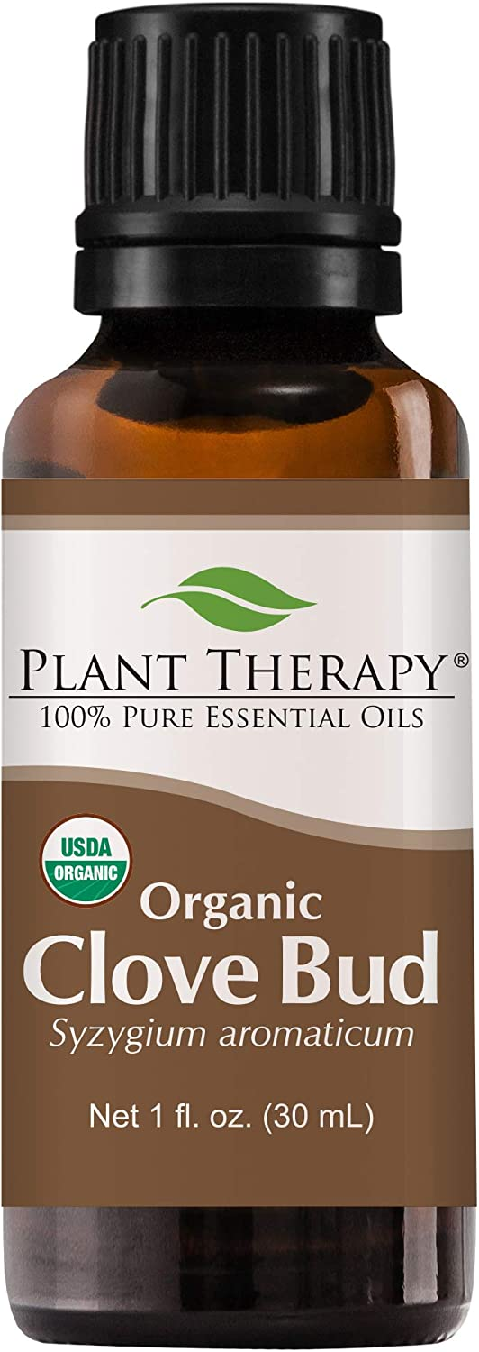 Plant Therapy Clove Bud Organic Essential Oil 30 mL (1 oz) 100% Pure, Undiluted, Therapeutic Grade
