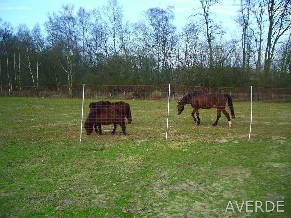 Pferdenetz, Weidezaunnetz, Mustang - Netz, 170 cm x 25 m