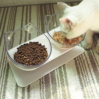 Gatos principiantes que alimentan tazones dobles con soporte elevado Cuenco de comida y agua para mascotas