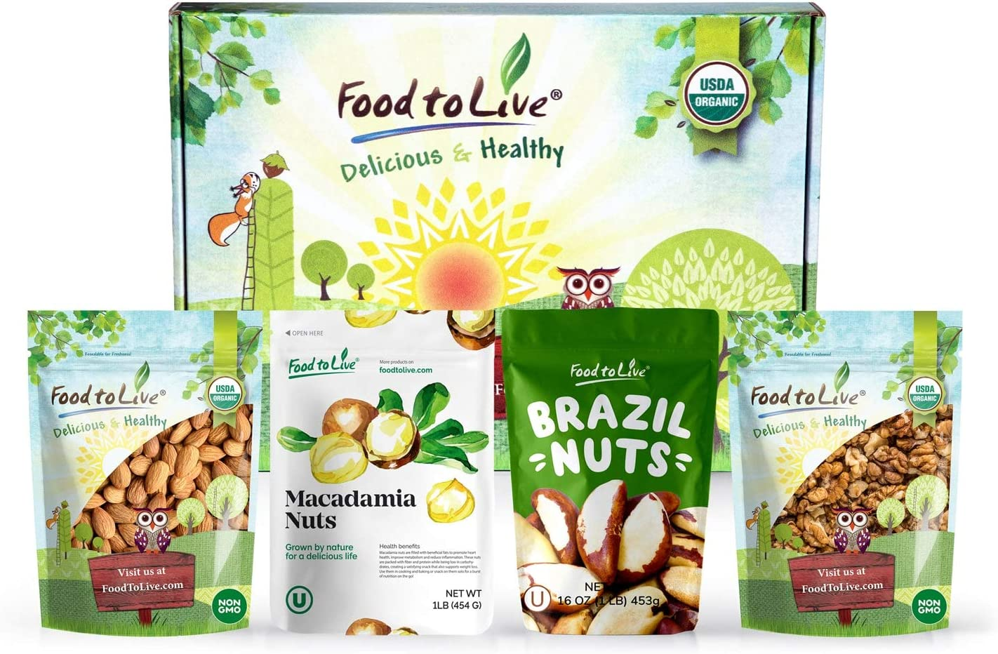 Raw Nuts in a Gift Box - Walnuts, Almonds, Brazil Nuts, and Macadamia Nuts