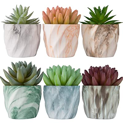 Miracliy 2.75 inch Marble Mini Succulent Pots Ceramic Planters Cactus Bonsai Flower Pots with Drinage(Set of 6) : Garden & Outdoor