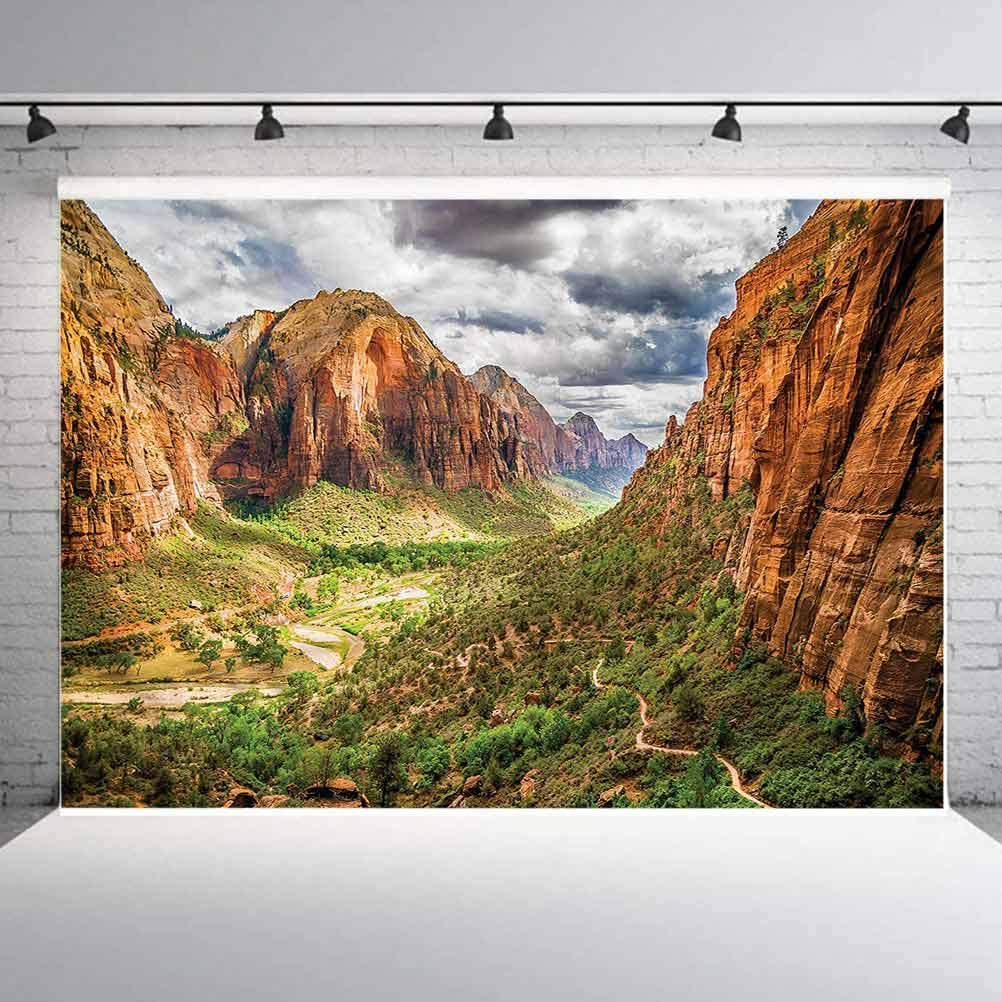 8x8FT Vinyl Backdrop Photographer,National Parks,Utah Plateau Mojave Background for Baby Birthday Party Wedding Studio Props Photography