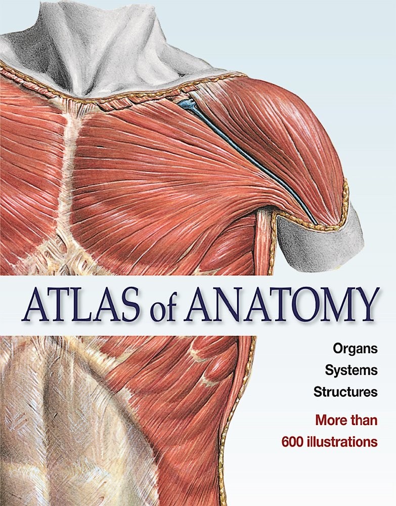Buy Atlas of Anatomy (Ullmann) Book Online at Low Prices in India ...