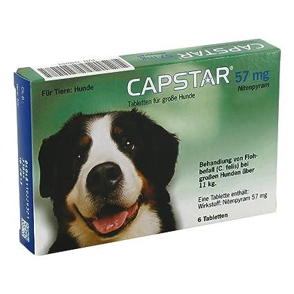 Capstar 57 mg Tabletten für grosse Hunde 6 stk