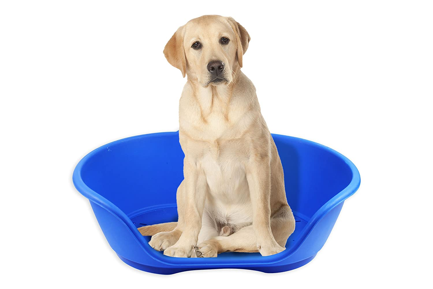 Heavy Duty Plastic Waterproof Pet Cat Dog Bed Baskets Available In All Sizes
