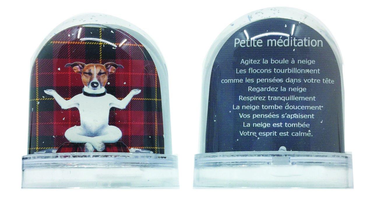Les Parisettes Palla a Neve Meditazione Cane