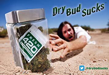 Review Fresh 420 Marijuana Humidifier