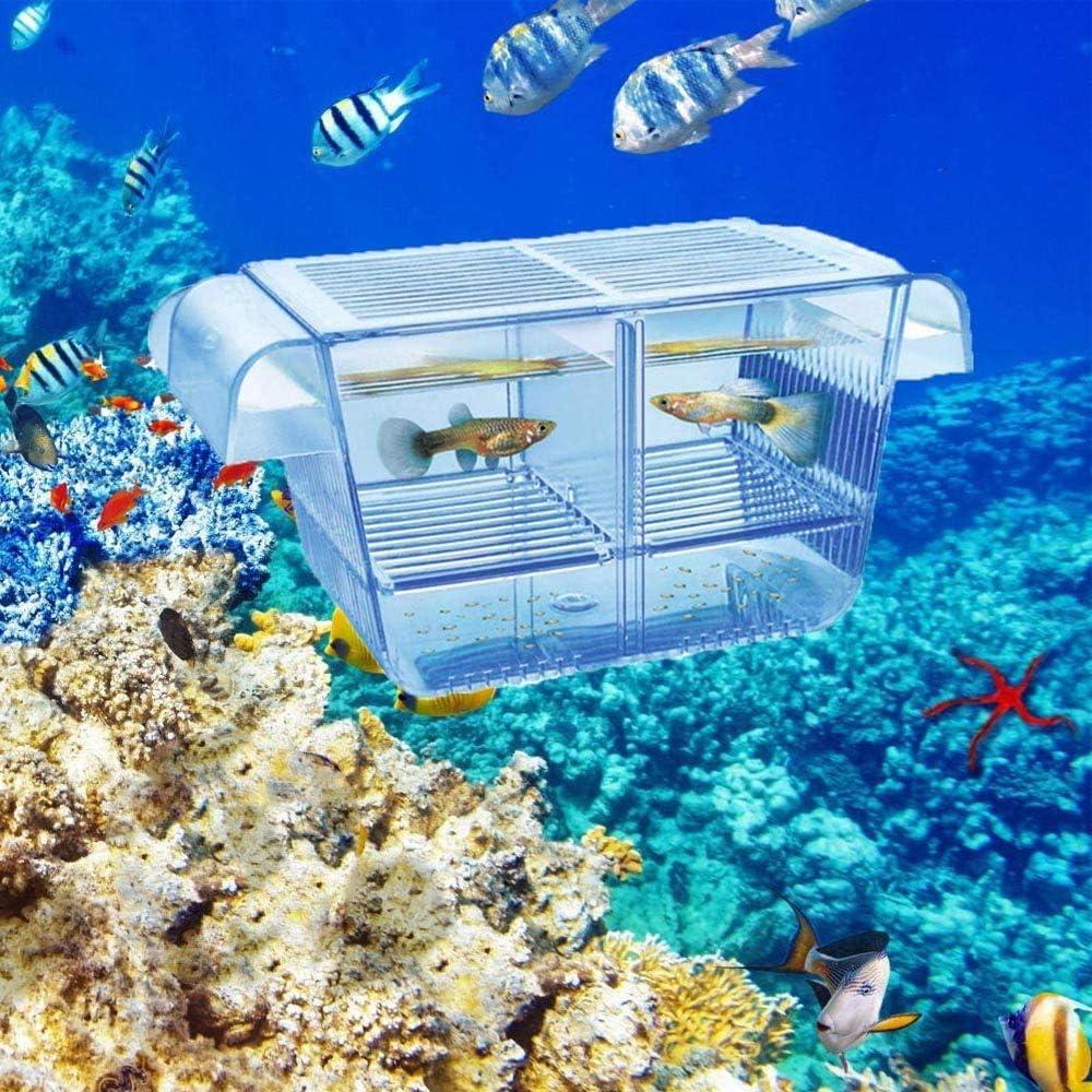 Lefunpets Aquarium Fish Breeding Box for Baby Fish Hatchery, Double Guppies Hatching Incubator Isolation Box (S 5.2x2.7x2.9 inch)