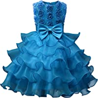 b10fcefd5a7a Amazon Best Sellers: Best Girls' Special Occasion Dresses