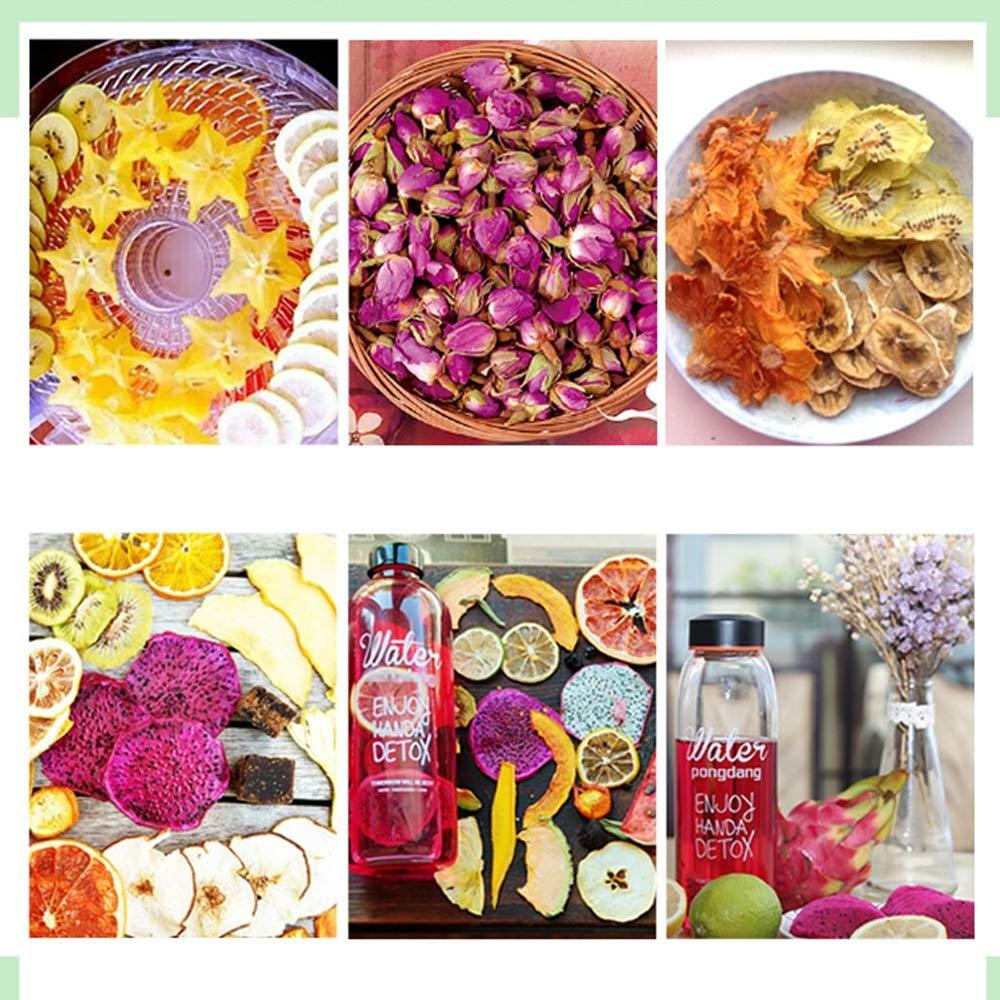 Jian E - Secador de alimentos - Nueva categoría alimenticia PP, Gran capacidad de 5 capas, Estante transparente, Altura ajustable, Máquina multiusos, ...