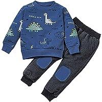 1-6 Años,SO-buts Niños Pequeños Bebés Dinosaurios De Dibujos Animados Camisetas Impresas Sudadera Pantalones Conjuntos…