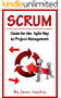 Scrum: Guide for the Agile Way to Project Management (English Edition)