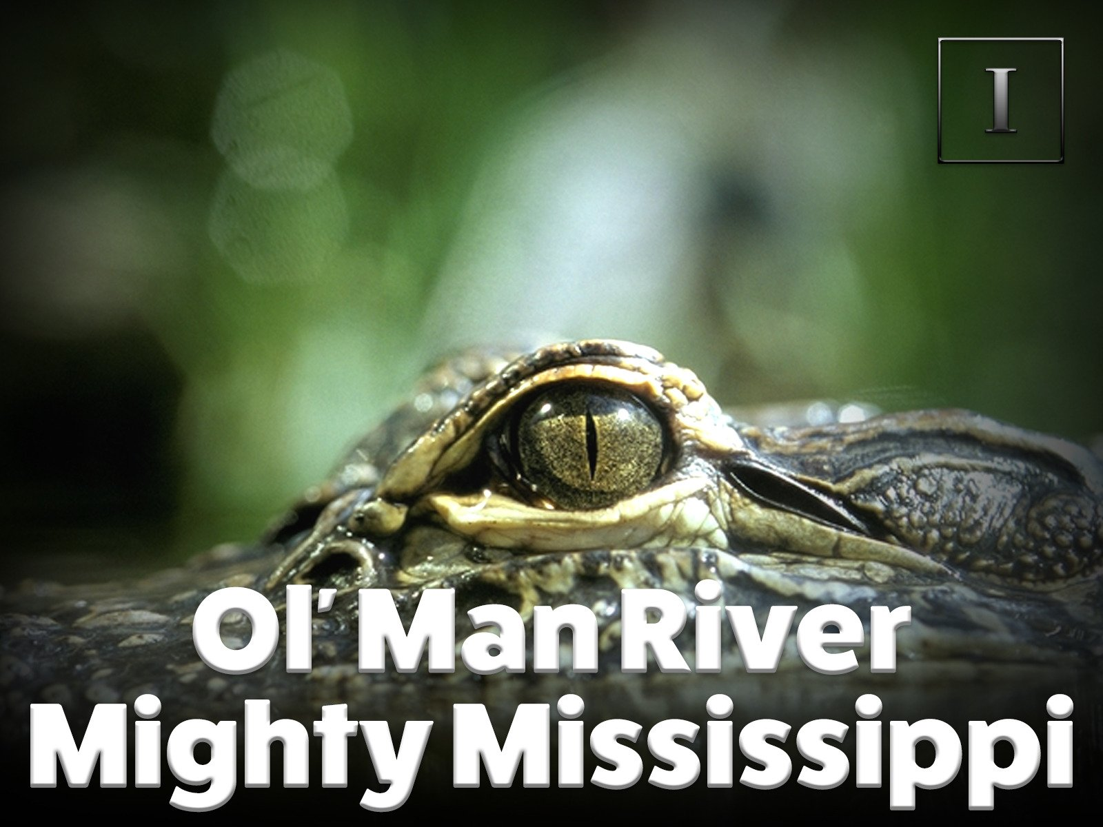 Ol' Man River - Mighty Mississippi on Amazon Prime Video UK