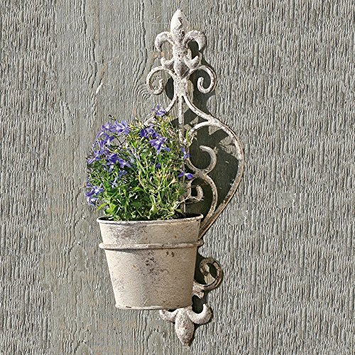 Cheap  The French Country Fleur-de-lise Crested Wall Hanger Plus Pot, Curled Iron, Distressed..
