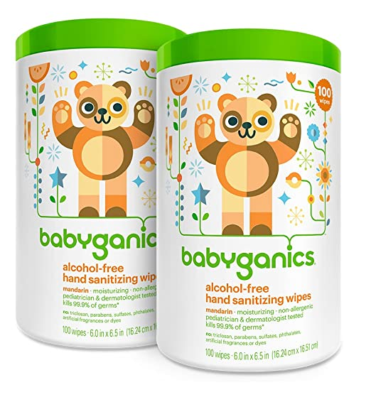 Review Babyganics Alcohol Free Hand