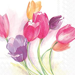 Celebrate the Home Floral 3-Ply Paper Cocktail Napkins, Tulip Season, 20-Count
