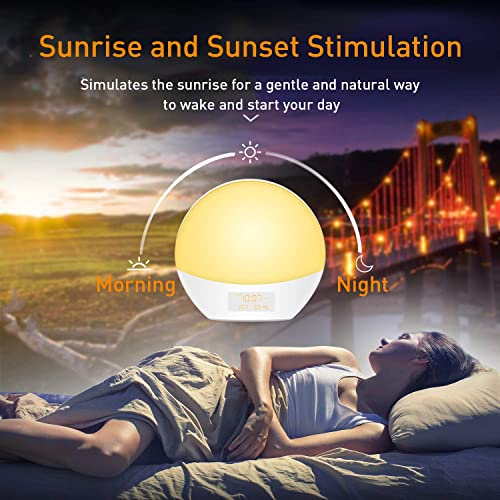 Wake Up Light Alarm Clock – AMYYMA Sunrise Sunlight Simulation 7 Color Night Light with Snooze Function, FM Radio, Digital Touch Control, USB Charger for Kids, Bedroom, Heavy Sleepers