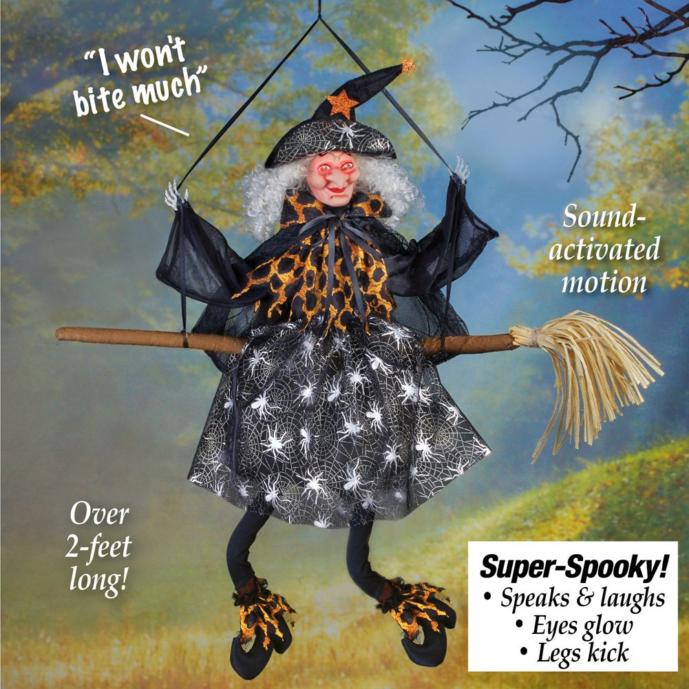 Sound Activated with Light Up Eyes Winston Brands Collections Etc Animated Halloween Witch Hanging Decoration
