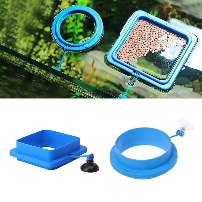 Exing - Estación de alimentación Flotante para Acuario, Acuario, pecera, círculo Cuadrado: Amazon.es: Productos para mascotas