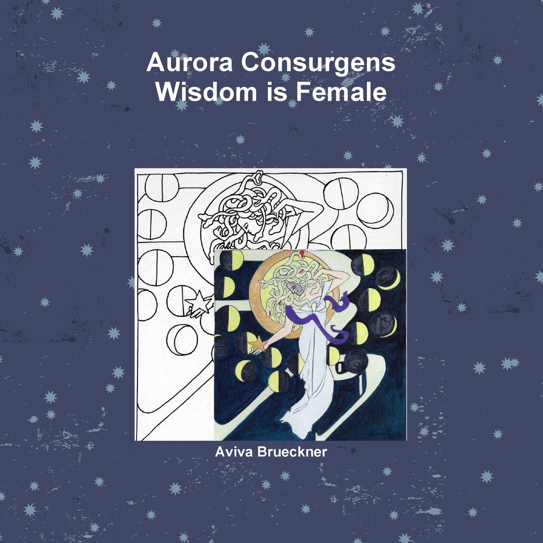 Download Aurora Consurgens ebook