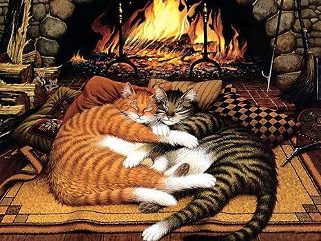 5d diy gato naranja y negro gato diamante Rhinestone bordado de punto de cruz de Kit
