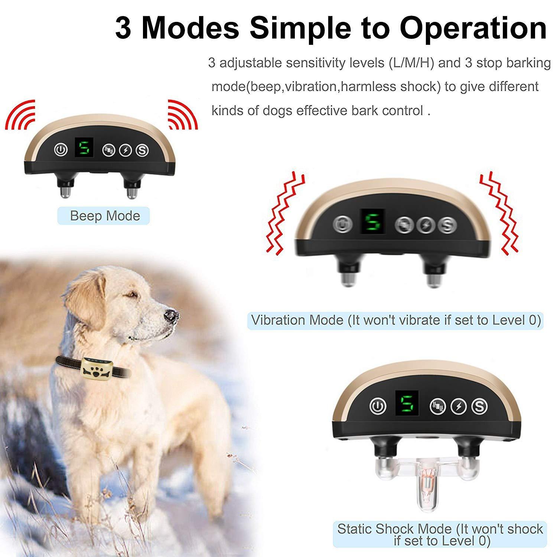 TOTIE Dog Bark Collar -7 Adjustable Sensitivity and Intensity Levels-Dual  Anti-Barking Modes Rechargeable/Rainproof/Reflective -No Barking Control  Dog