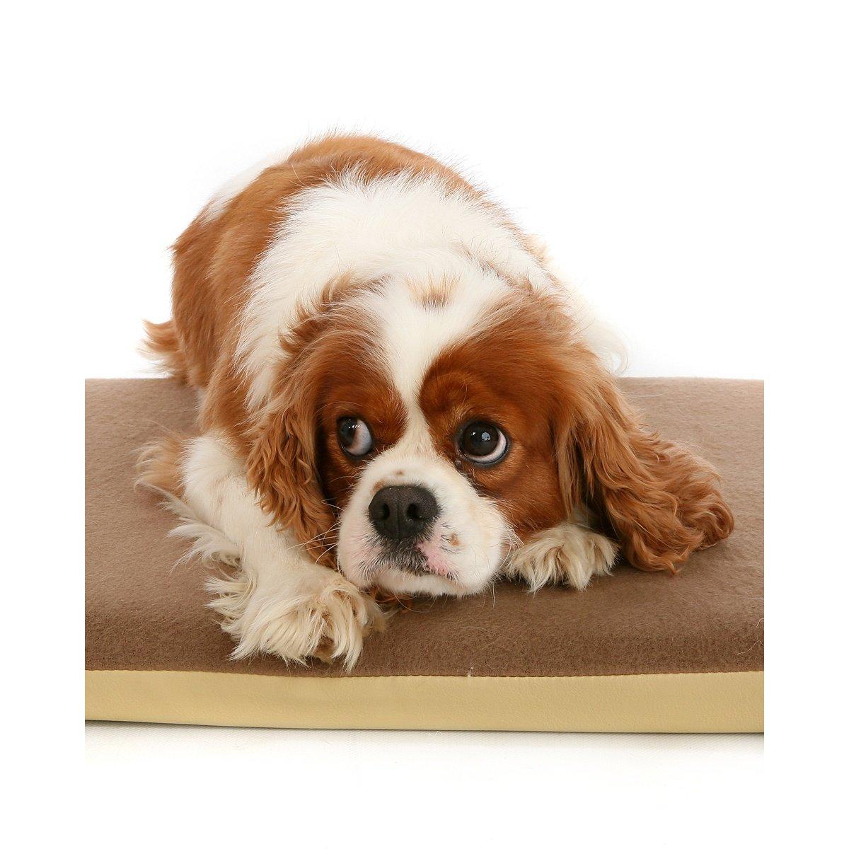 Brown Large Brown Large Petlife Posture Pal Memory Foam Dog Cat Bed