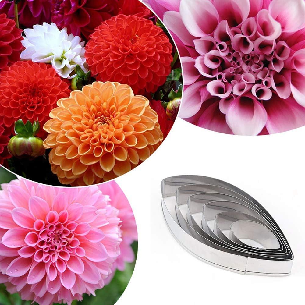 outil de coupeur de biscuits de biscuit de Dahlia de fleur Silver HshDUti 6pcs moules d/écoratifs de g/âteau de fondant