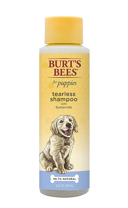 e43b1685abb4 Pet Shampoos   Amazon.com  Burt s Bees for Dogs Natural Tearless ...