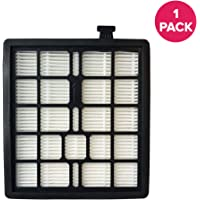 Crucial Vacuum Replacement Vacuum Filter Compatible With Dirt Devil Vacs - Part F45 - Fits Models