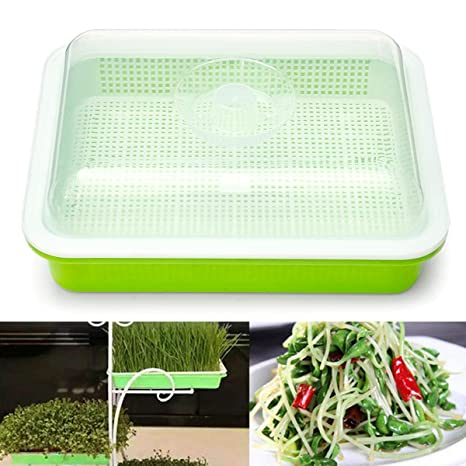 Seed Sprouter Tray Free Soil-Free Big Capacity Healthy Wheatgrass