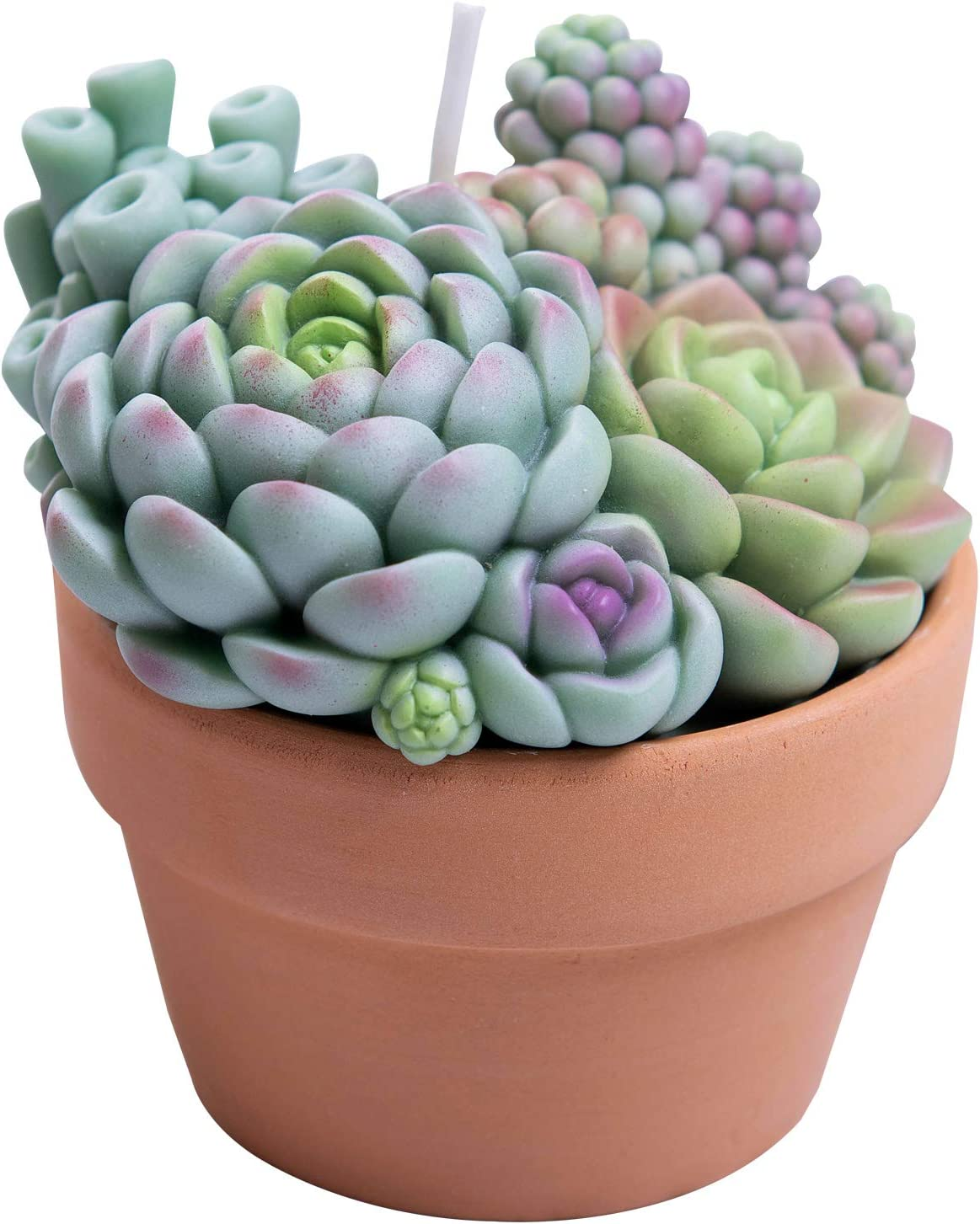 ILIKEPAR Assorted Succulent Pot Scented Candle for Spa Home Decoration Wedding Gift