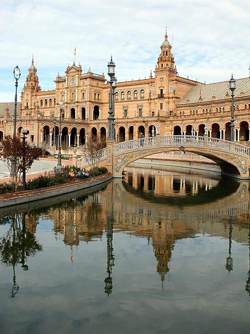 HCYEFG 1000 Piezas Rompecabezas Juguetes Educativos Hermosa Plaza De España, Sevilla, España Rompecabezas Educativo para Niños 1000Piezas: Amazon.es: Hogar