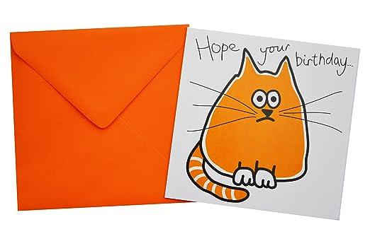 CAT Birthday card Orange envelope Amazoncouk Clothing – Cat Birthday Card