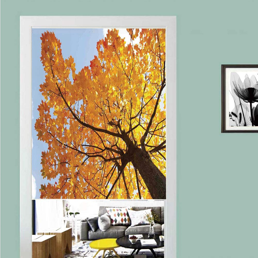 3D printed Magic Stickers Door Curtain,Leaves,Autumn Maple Tree from Bottom to Top View Environment Flora Season November Print,Orange Blue ,Privacy Protect for Kitchen,Bathroom,Bedroom(1 Panel)