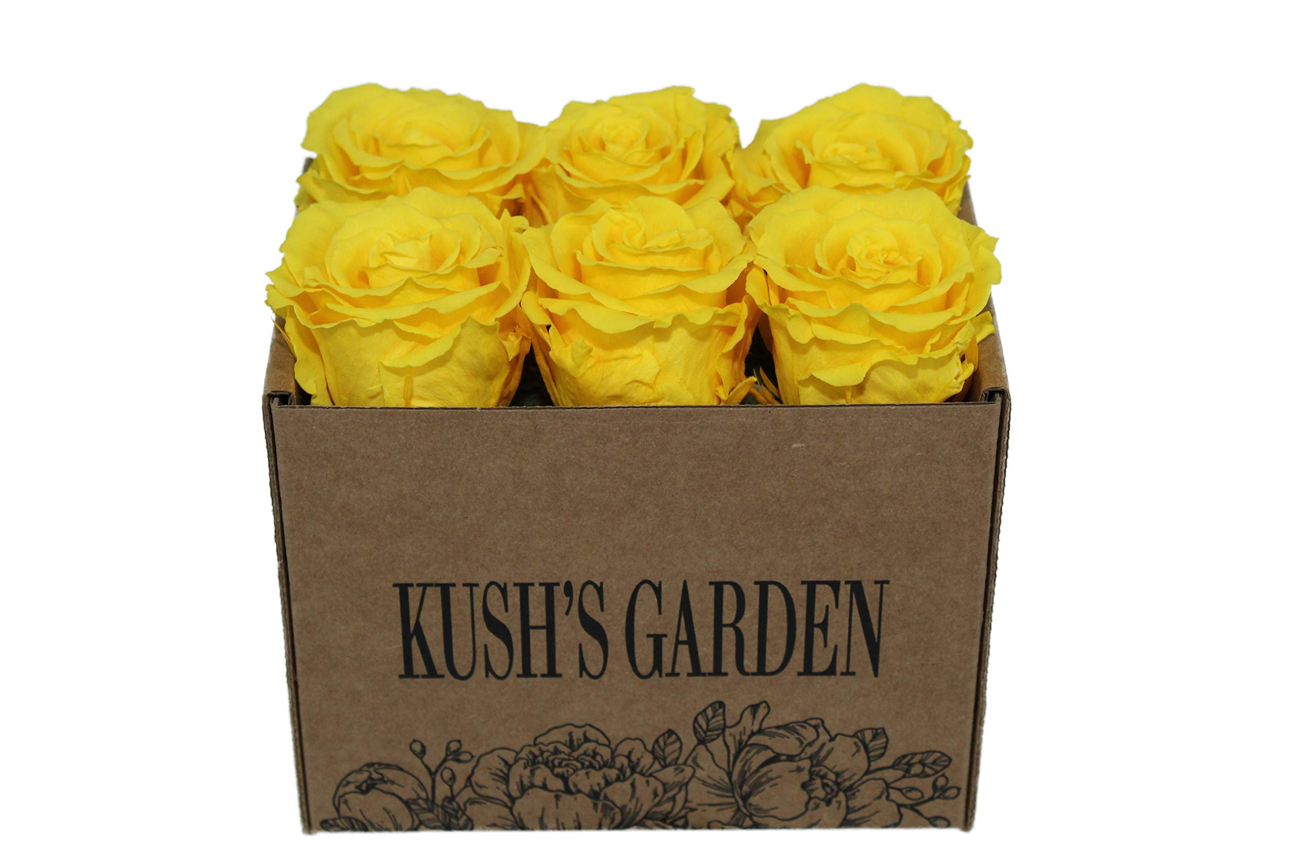 KUSHS GARDEN Real Preserved Roses in Box (Sunshine Yellow) by KUSHS GARDEN