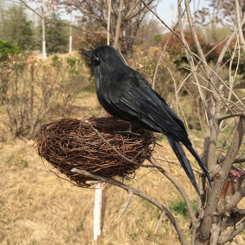 sharplace 6 pieces realistic looking halloween decoration bird black crows ravens