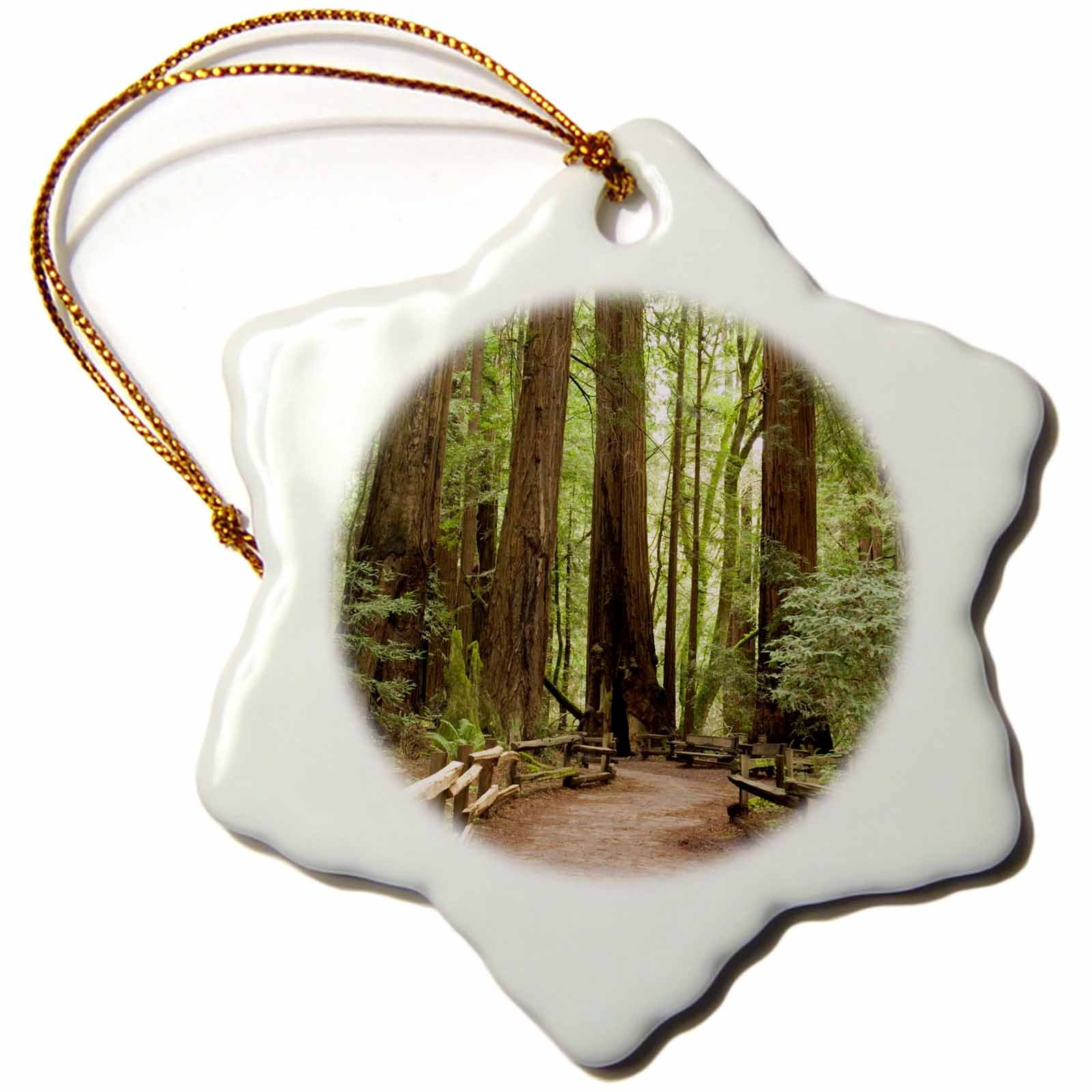 3dRose orn_88412_1 California, Marin County, Muir Woods NM, Path US05 IHO0157 Inger Hogstrom Snowflake Porcelain Ornament, 3-Inch