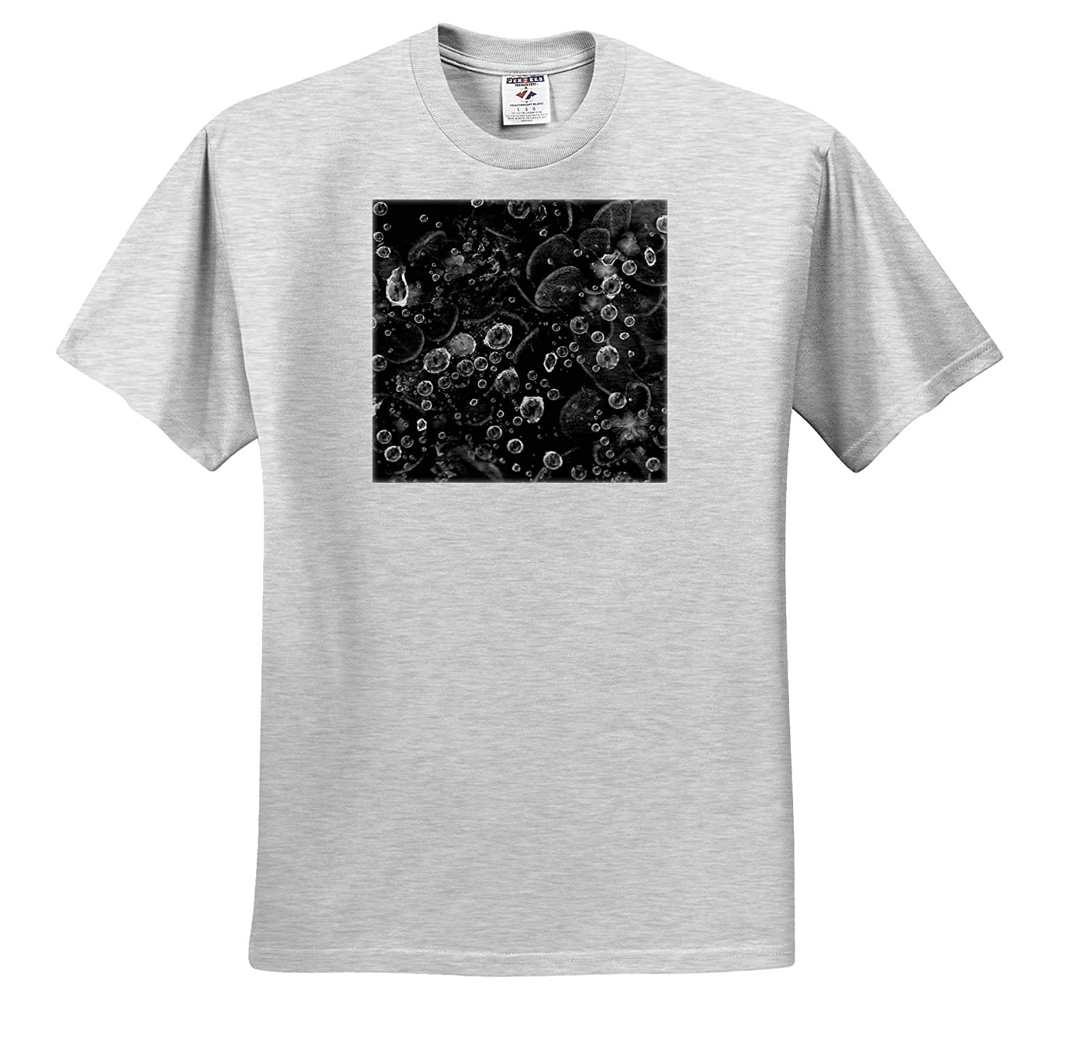 - Adult T-Shirt XL Black and White Macro Photograph of Raindrops on a Spider Web ts/_319064 3dRose Stamp City Nature