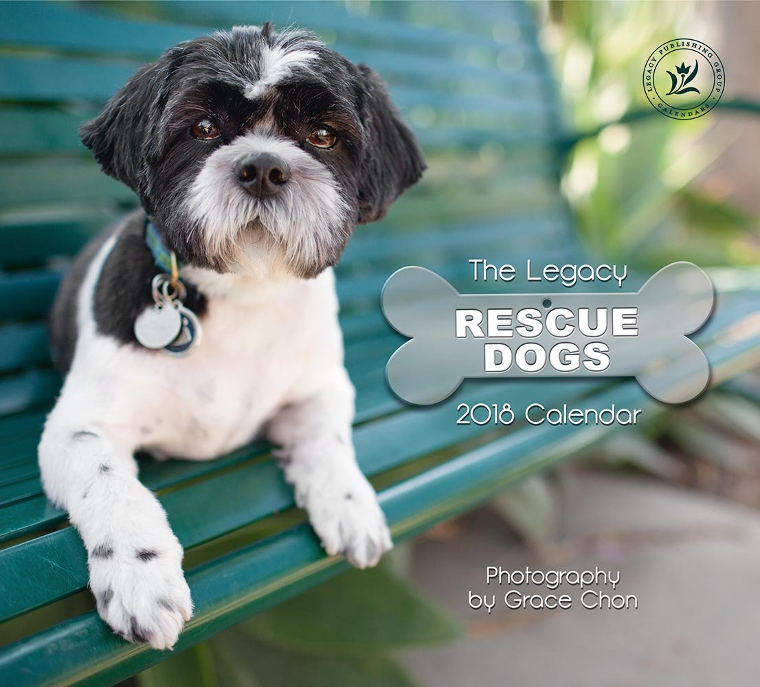 Read Online 2018 12-Month Wall Calendar, Rescue Dogs ebook