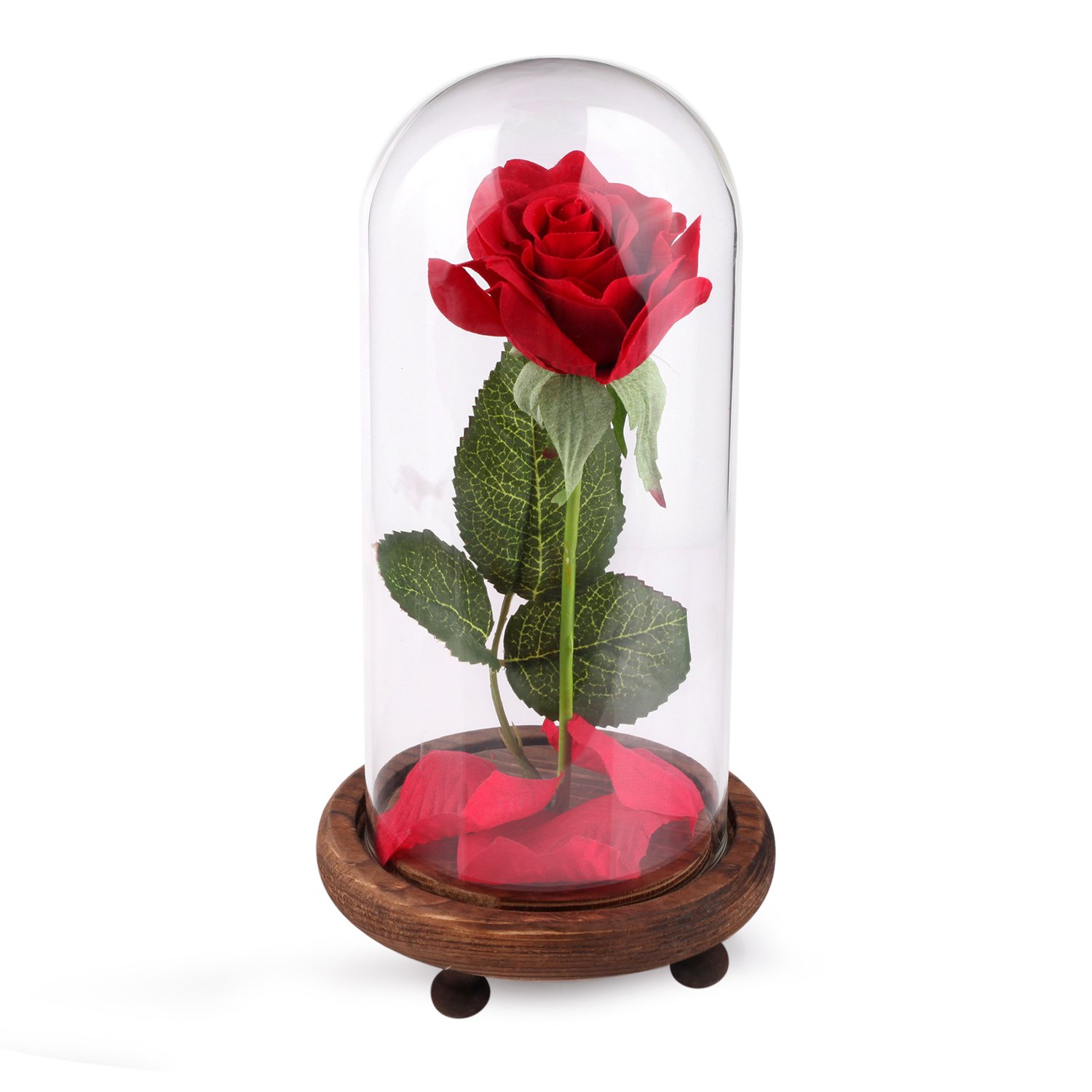 red silk rose in a glass dome home lamp decoration beauty and the beast ebay. Black Bedroom Furniture Sets. Home Design Ideas