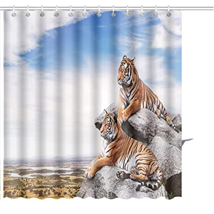 Amazon MuaToo Shower Curtain Calm Tigers On The Rocks Print
